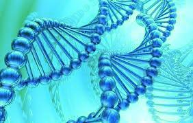 DNA green